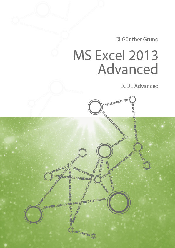 MS Excel 2013 Advanced